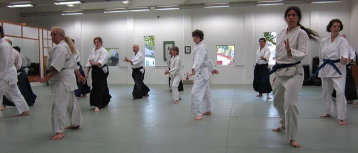 Aikido 2 step